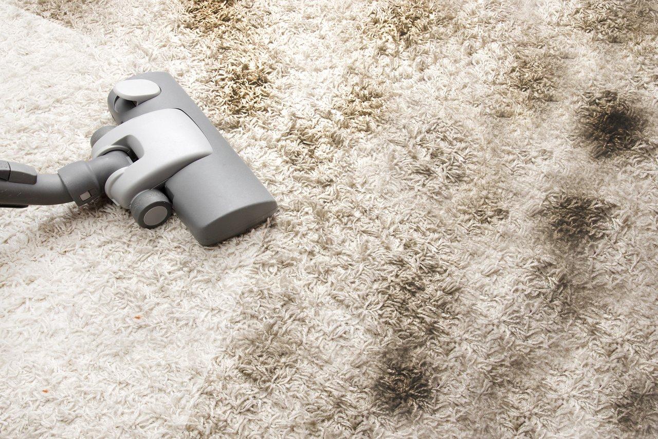 Hochflor teppichboden  Teppichböden - für ein behaglich-kuscheliges Wohngefühl ...